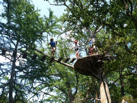 cypress valley canopy tours a tree top adventure at cypress valley canopy tours in