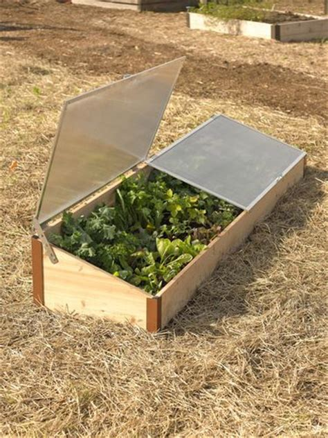 cold box gardening 63 best images about cold frames on pvc pipes