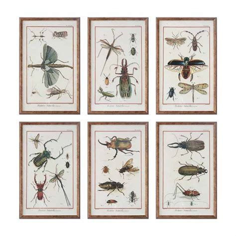 Multi Insect Print Set Wall Art Collection Copper Bronze