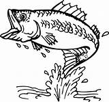 Fishing Fly Clip Clipart Coloring Pages Fish Bass Drawing Line sketch template