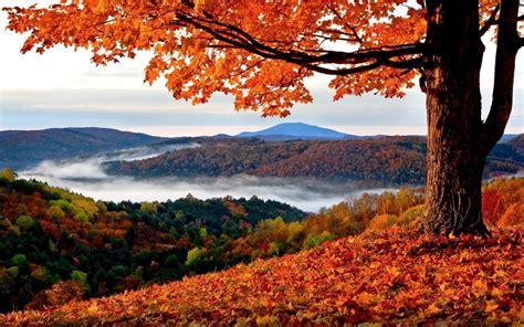 Beautiful Autumn Landscape  Wildlife Archives Wildlife