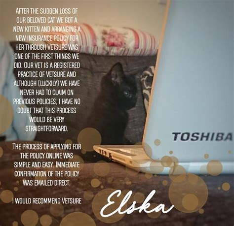 Pet insurance for cats and kittens can protect your family's budget from unexpected veterinary bills. Elska cat review | Cat insurance, Dog insurance, Cats