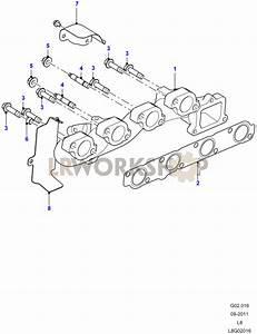 Exhaust Manifold - 2 2 Tdci