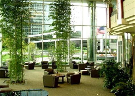 Plantation Homes Interior - corporate lobby