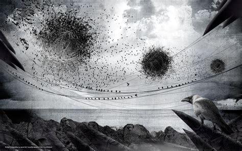 corbeau bureau tlcharger fond d 39 ecran noir et blanc corbeau roy fonds d