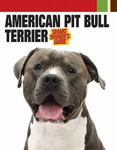 American Pit Bull Terrier  Smart Owner U0026 39 S Guide