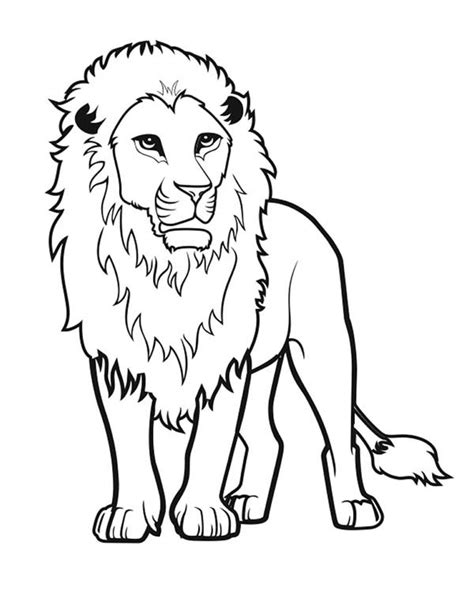 awesome lion drawing coloring page color luna