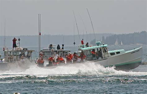 Lobster Boat Races by Lobster Boat Races Turn Stonington Harbor Into High Speed