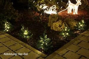 Mini Obstbäume Für Den Garten : mini tannen deko weihnachten garten ~ Heinz-duthel.com Haus und Dekorationen