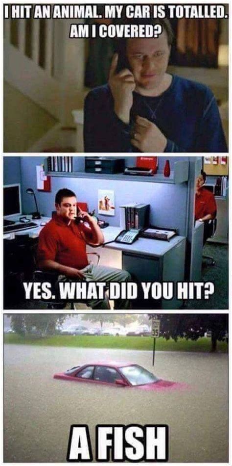 Jake State Farm Meme - it s jake at state farm funny pinterest funny posts and funny posts