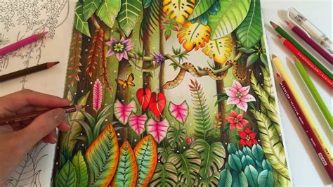 magical jungle adult coloring book by johanna basford