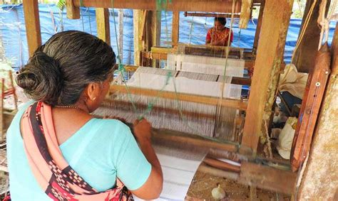 cochin day tours backwater tours village life