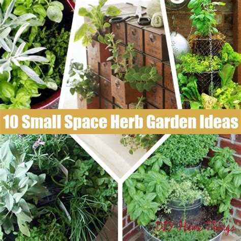 10 small space container and herb garden ideas diy home