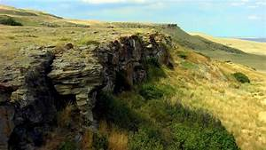 Yes, there is a place called Head-Smashed-In Buffalo Jump ...