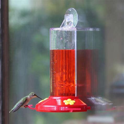amazon com perky pet 8 oz window mount hummingbird