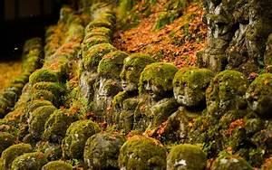 HD Nature – Landscape Wallpapers 7