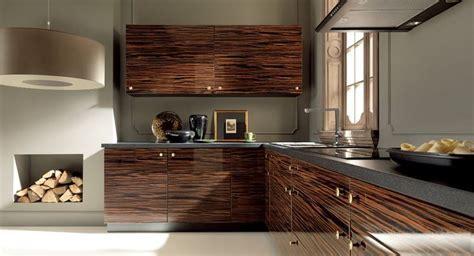 Modern kitchen   dark exotic wood texture   Modern Kitchen