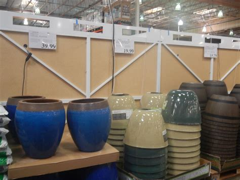 Stuff I Didn't Know I Needed…until I Went To Costco (feb