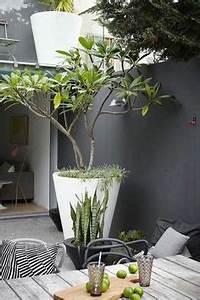 terrasse et jardin en 105 photos fascinantes pour vous With decoration jardin avec pierres 3 clatures de jardin en 59 idees captivantes