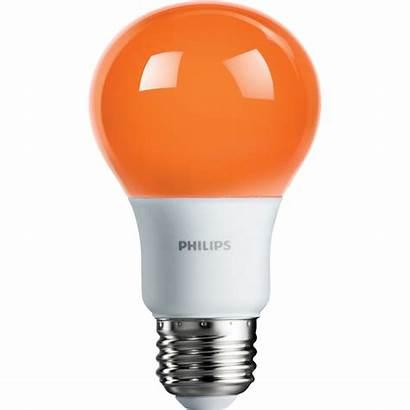 Orange Led Bulb A19 Base Medium Bulbs