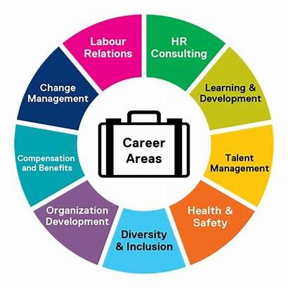 Hr Health Management Informatics Human Resources Wheel