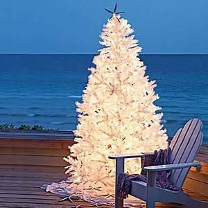 A Simple Beach themed Christmas