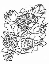 Coloring Flower Roses Flowers Rose Bouquet Bunch Sketches Drawing Drawings Printable Getdrawings Pencil Sketch Clipartqueen Line sketch template
