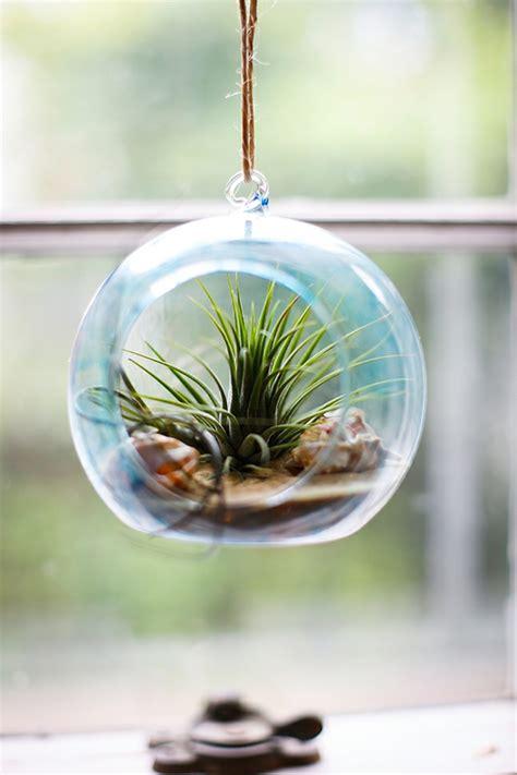 boule en verre 87 photos et tutos diy faciles pour d 233 couvrir le charme du terrarium suspendu archzine fr