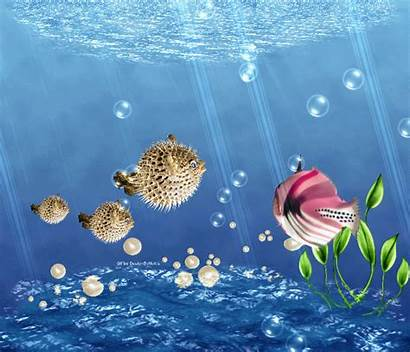 Sea Under Bubbles Fish Ocean Fishes Thank