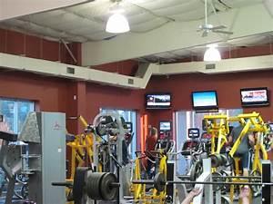 Gold's Gym Destin Florida - My Favorite Workout Place