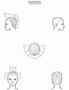 Hairtech  Head Sheet Haircut