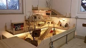 Meerschweinchen Gehege Ikea : innengehege f r meerschweinchen meerschweinchen gehege pinterest meerschweinchen ~ Orissabook.com Haus und Dekorationen