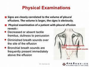 Pleural Effusion Lung Sound