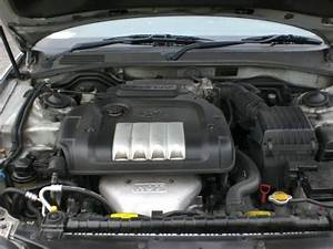 Not Sure Which Spark Plugs To Get For 2004 Sonata
