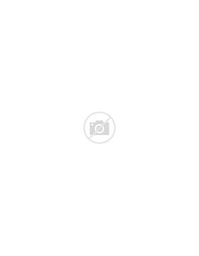 Critters Coloring Bundle Nature Kollabora