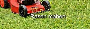Wann Rasen Mähen : rasenpflege von a z alles zu vertikutieren bis m hen ~ Watch28wear.com Haus und Dekorationen