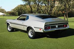 1971 Ford Mustang Mach 1 Fastback Coupe Photograph by Car Culture