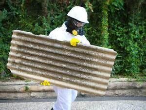 asbestos removal melbourne  business services