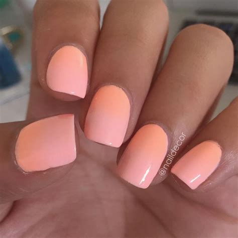 nails color best 25 nail ideas on