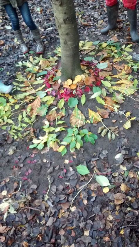 wildwood andy goldsworthy inspired woodland art workshop