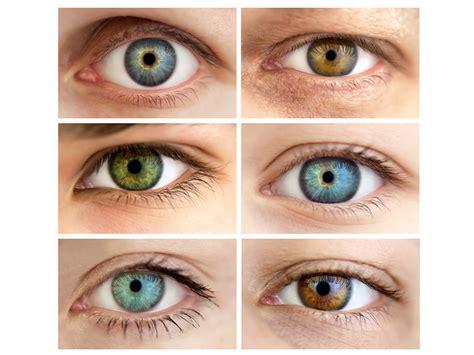 ¿qué Dice El Color De Los Ojos Sobre La Salud?