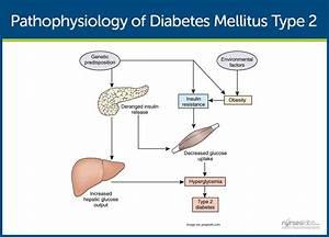 Diabetes Mellitus  Nursing Care Management