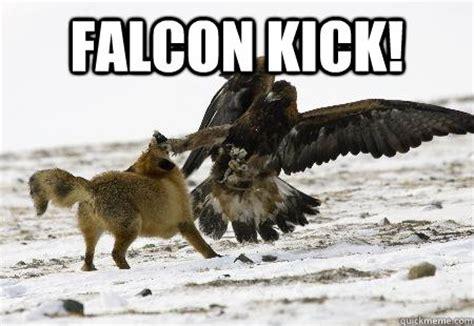 Captain Falcon Memes - captain america 2 falcon memes