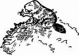 Beaver Dam Coloring Builds sketch template