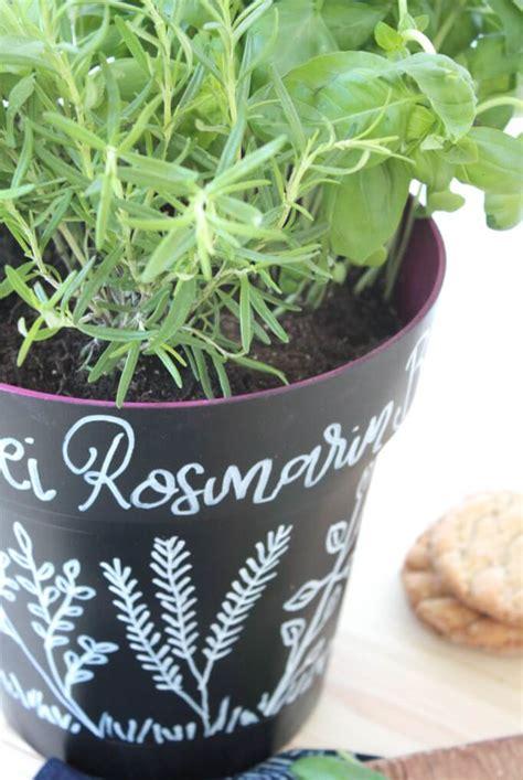 Kräutergarten Küche Diy by Diy Mini Kr 228 Utergarten Selber Machen Rosy Grey Diy