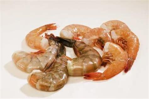 sea animals  eat plankton cutenesscom