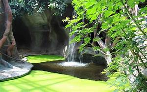 Garden Full Hd Beautiful Wallpaper Free Download Beguiling ...