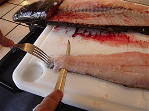 comment cuisiner le silure comment cuisiner le silure 28 images comment cuisiner