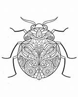 Coloring Onedrive Insect Pdf Bug Butterfly sketch template