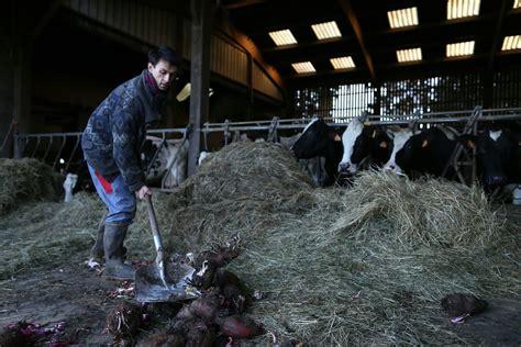 chambre agriculture 06 les agriculteurs français bio vent debout contre la